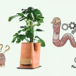 Test et avis sur le pot de fleurs composteur des Transfarmers